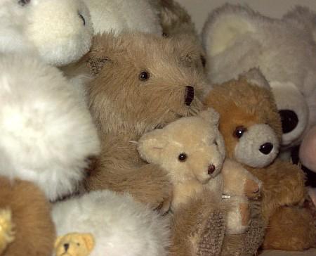 Some bears